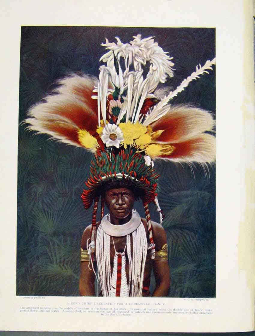 Print Roro Chief Decorated Ceremonial Dance Tribe Indian Art 2137531 Old Original