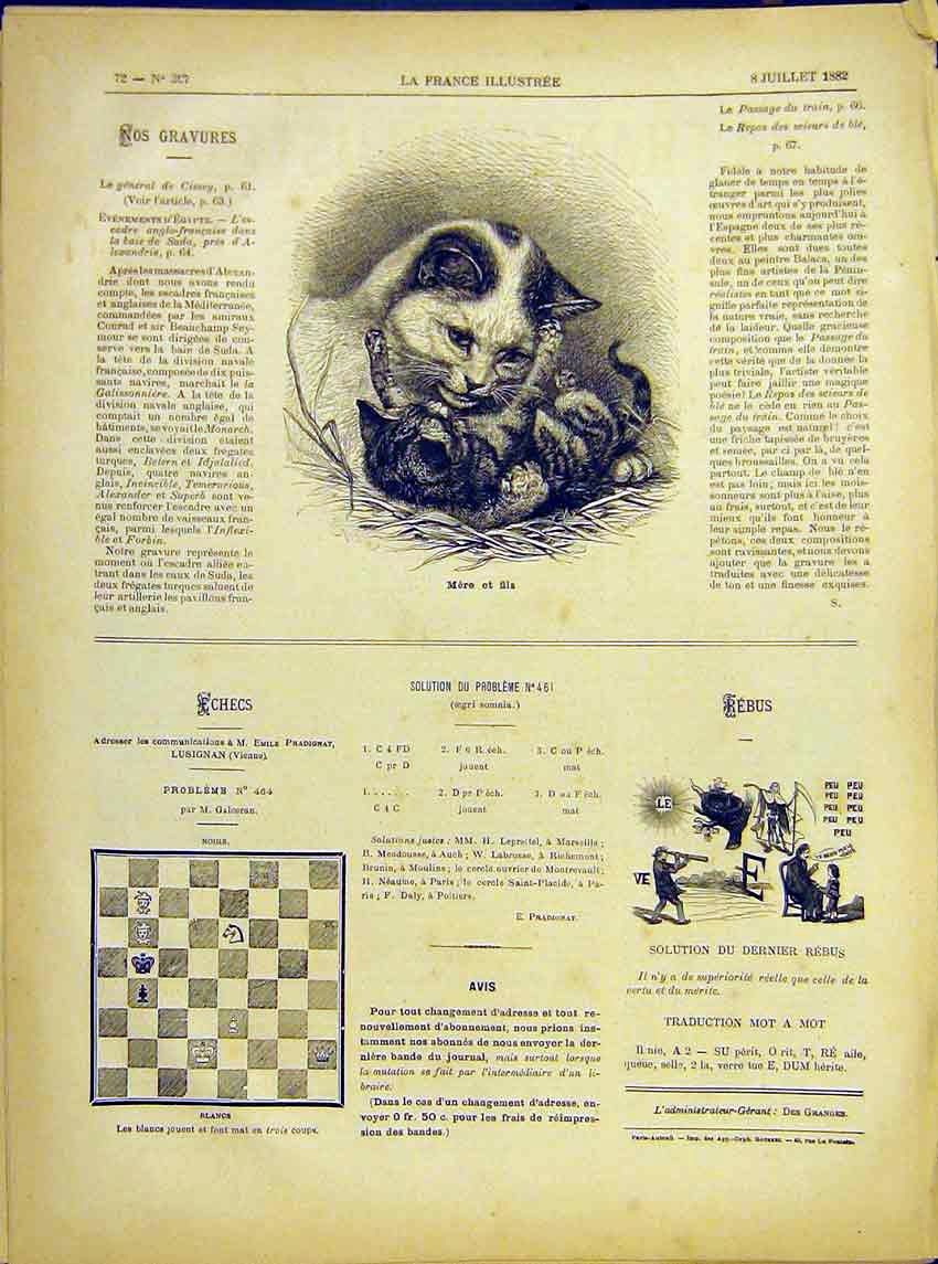 Print Mother Son Cat Kitten Animal French 1882 727621 Old Original