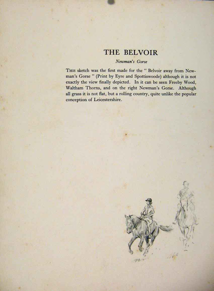 Print The Belvoir Newmans Gorse By Lionel Edwards Drawing 477651 Old Original