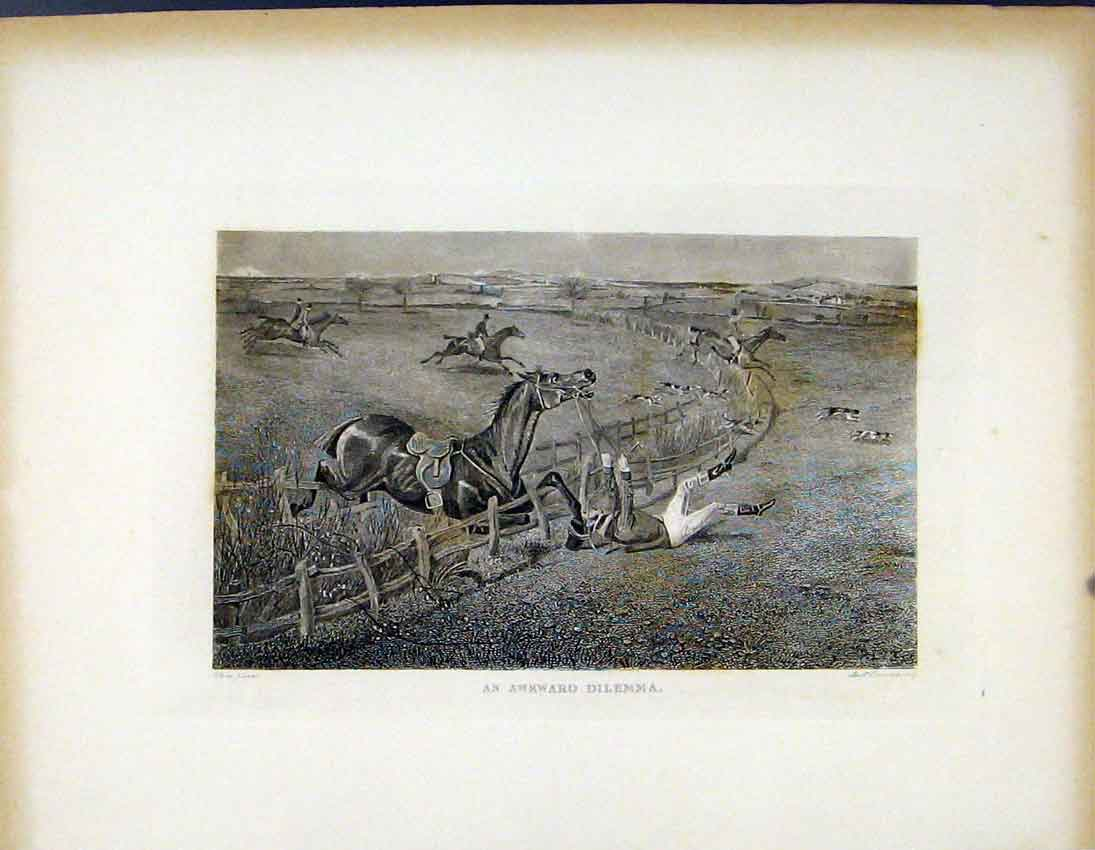 Print Awkward Dilemma C1843 Horse Jumping Fence 577691 Old Original
