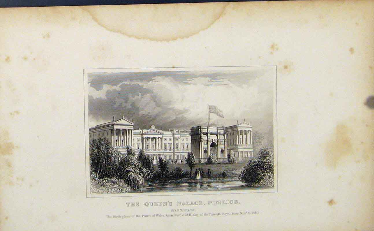 Print Queens Palace Pimlico Middlesex England London C1849 977721 Old Original