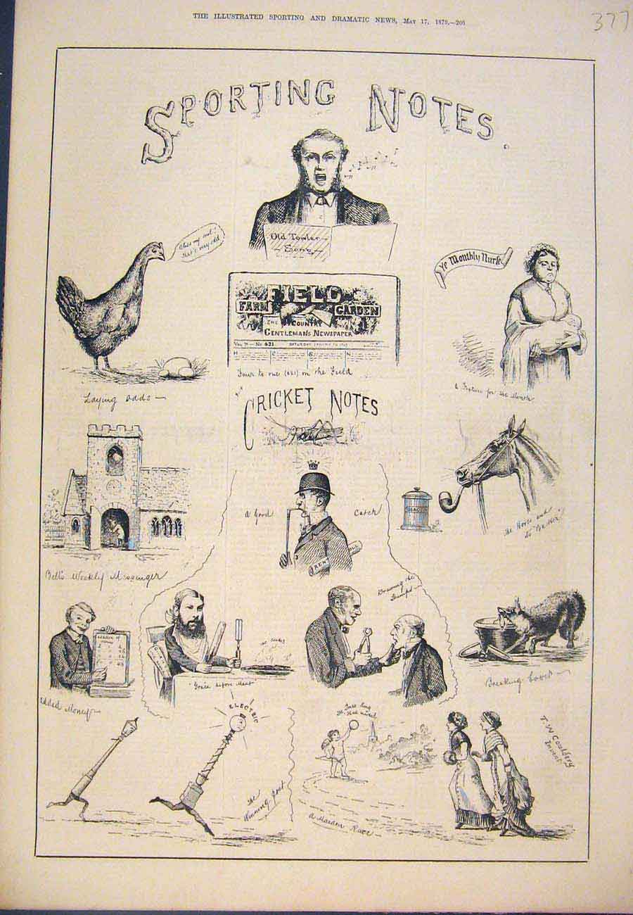 Print Sporting Notes Sketches Sport Cricket 1879 777761 Old Original
