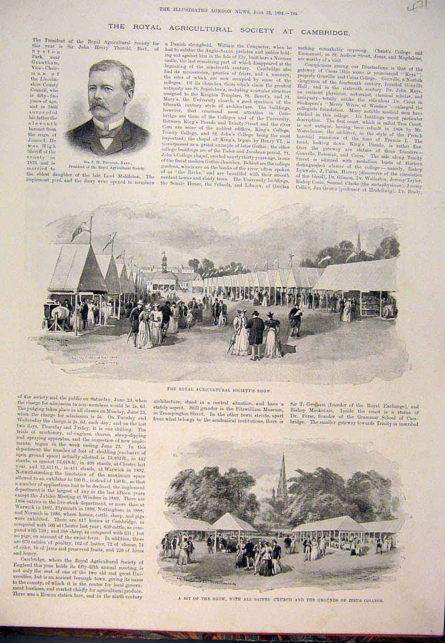 Print 1894 ThorRoyal Agricultural Society Show Cambridge 317761 Old Original