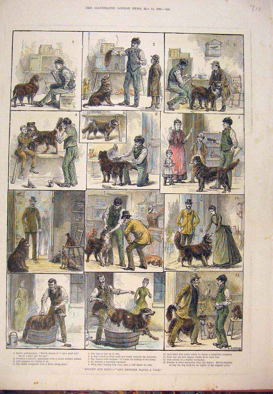 Print 1888 Bought SDog Tail Story Sketch Dadd 107761 Old Original
