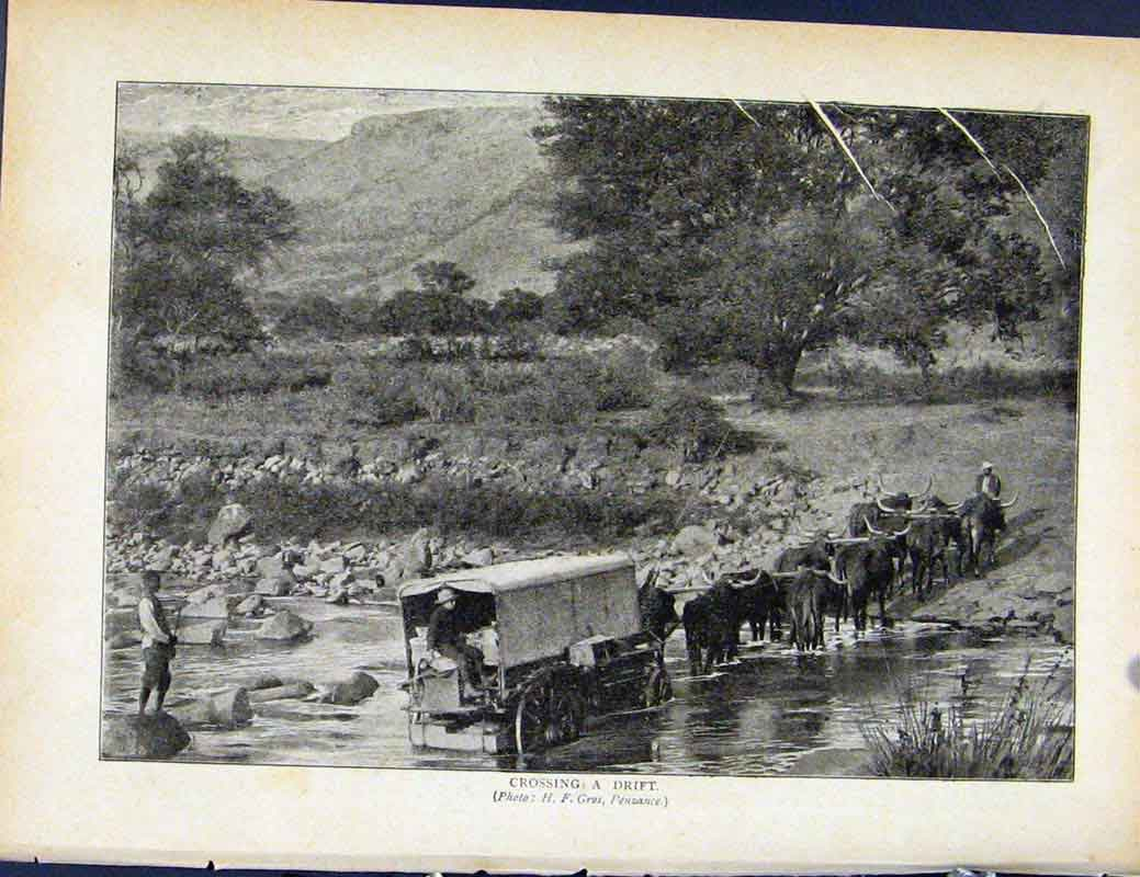 Print Boer War By Richard Danes Corssing A Drift 517871 Old Original