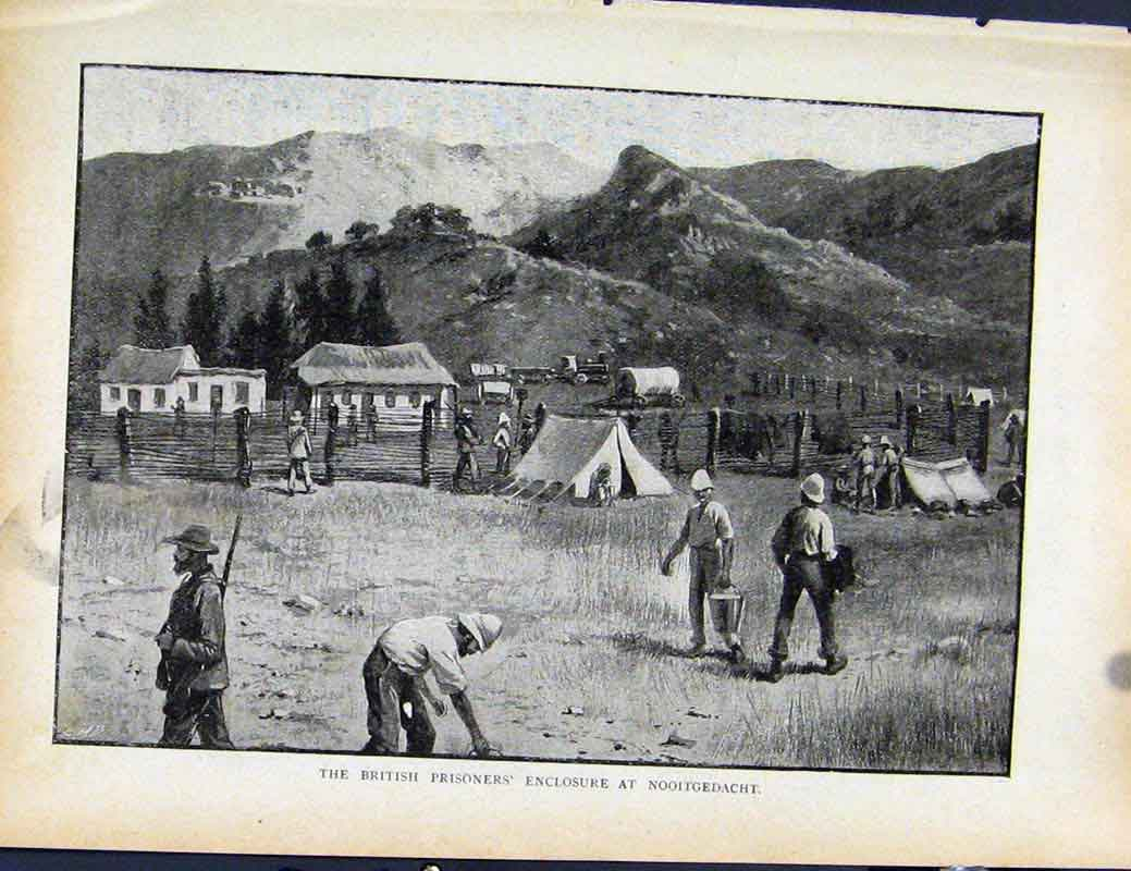 Print Boer War Richard Danes British Prisoners Nooitgedacht 2727871 Old Original