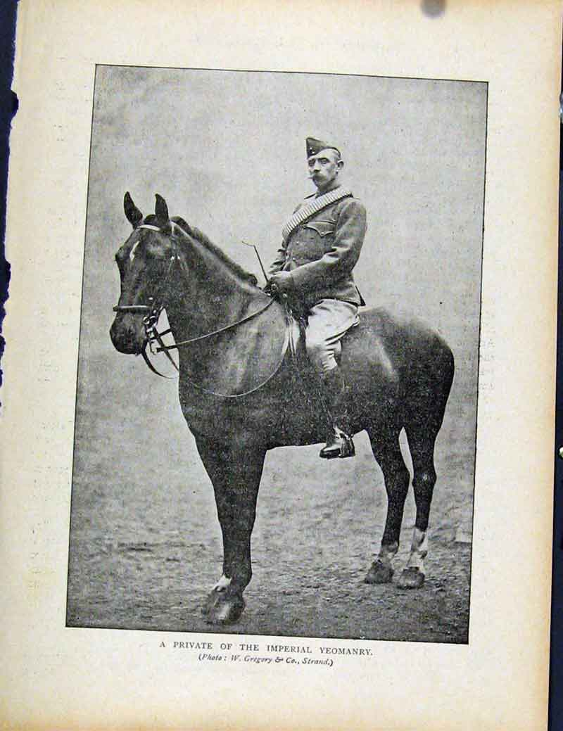 Print Boer War By Richard Danes Private Imperial Yeomanary 567871 Old Original