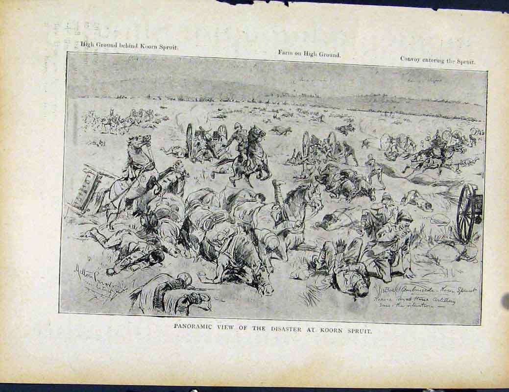 Print Boer War By Richard Danes Panoramic View Disaster Koorn 447871 Old Original