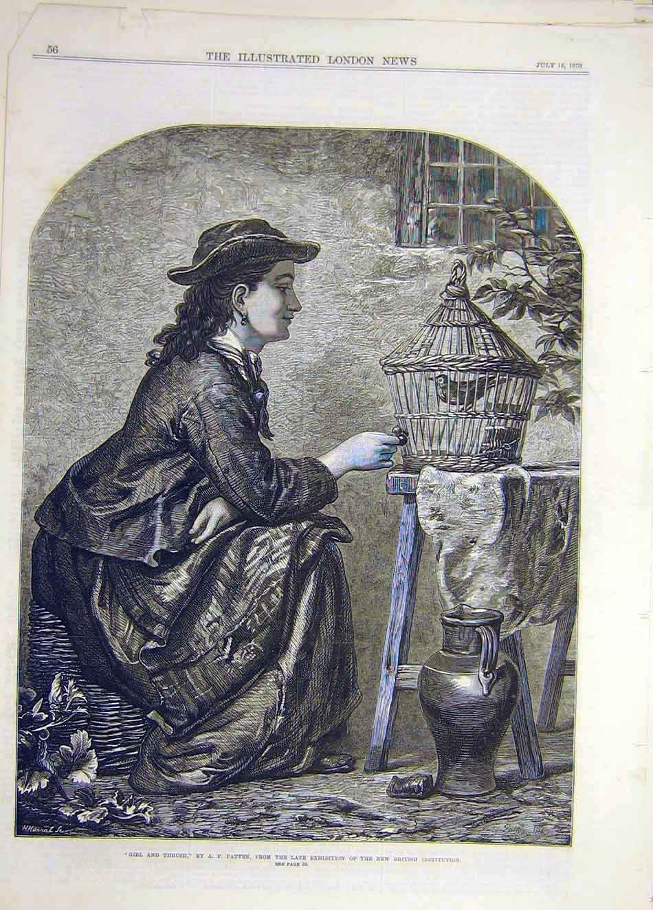 Print 1870 Girl Thrush Patten Fine Art 737921 Old Original