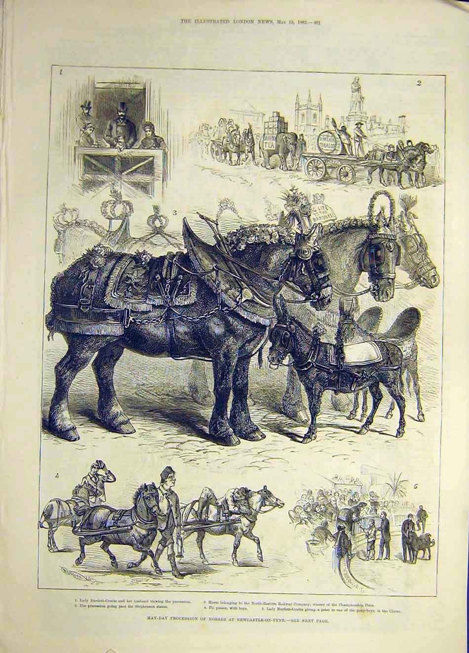 Print 1882 May-Day Procession Horses Newcastle-On-Tyne 097921 Old Original