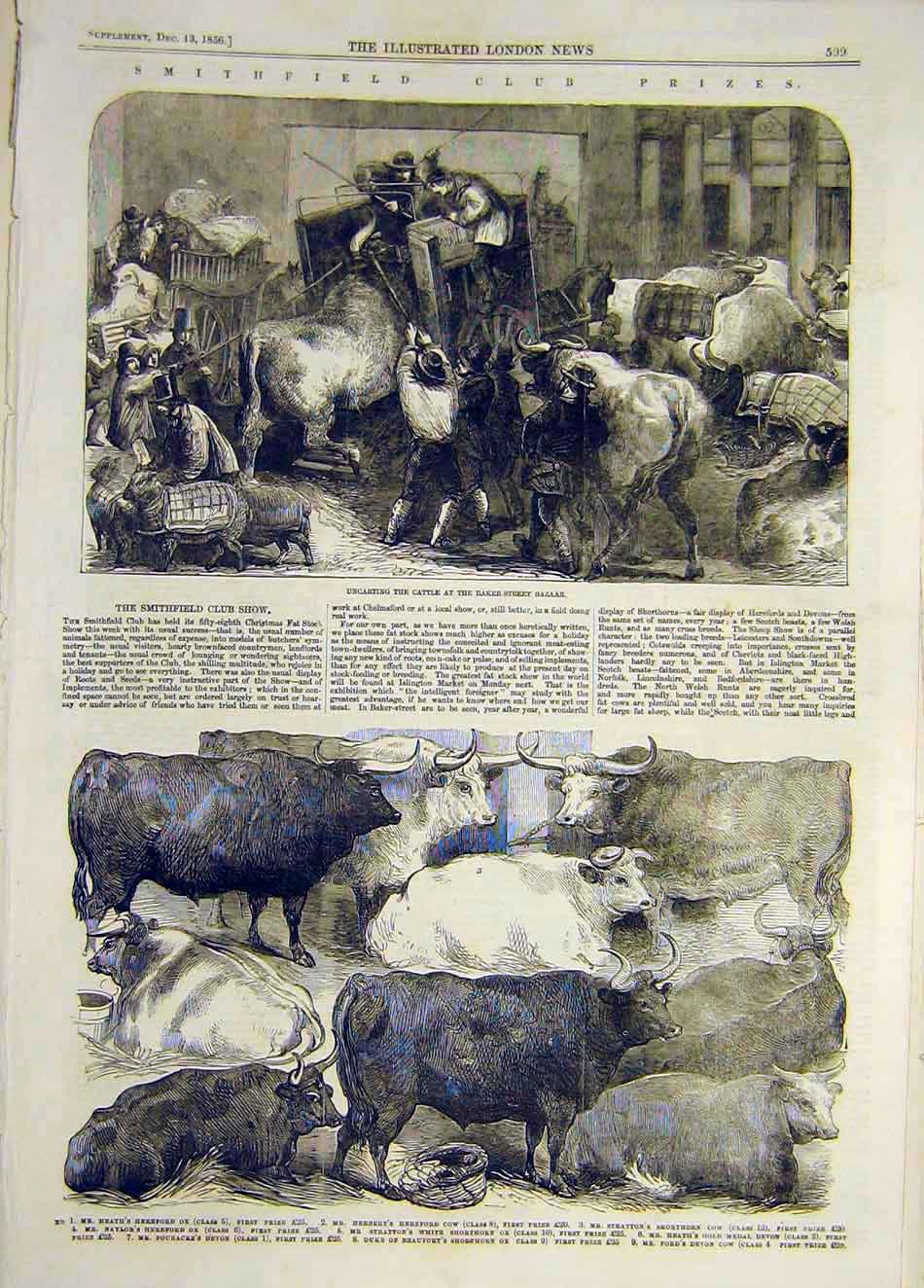 Print 1856 Cattle Bazaar Hereford Ox Cow Shorthorn Animal 787921 Old Original