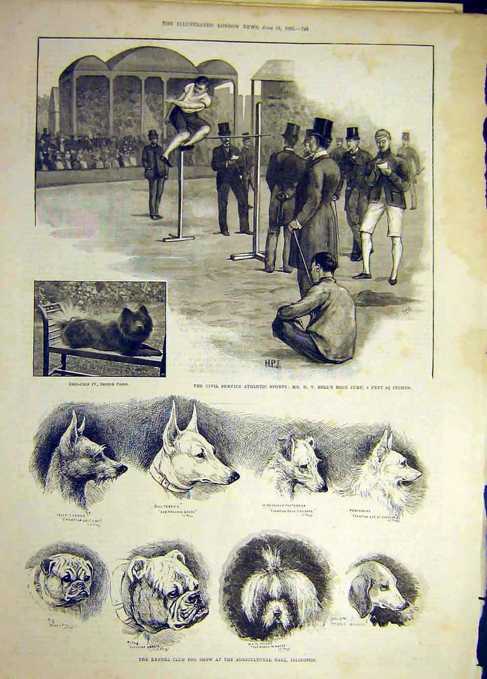 Print 1892 Civil Service Athletic Sport Kennel Club Dog Show 157921 Old Original