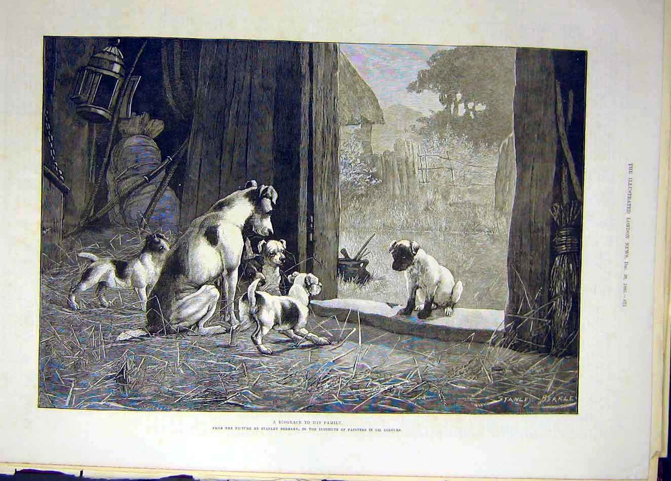 Print 1885 Disgrace Puppy Berkley Fine Art Animal 187921 Old Original