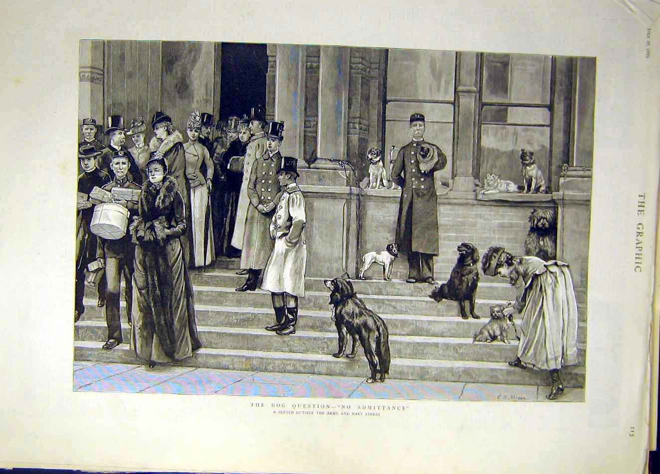 Print 1889 Army Navy Stores Dog Question Sketch 257921 Old Original