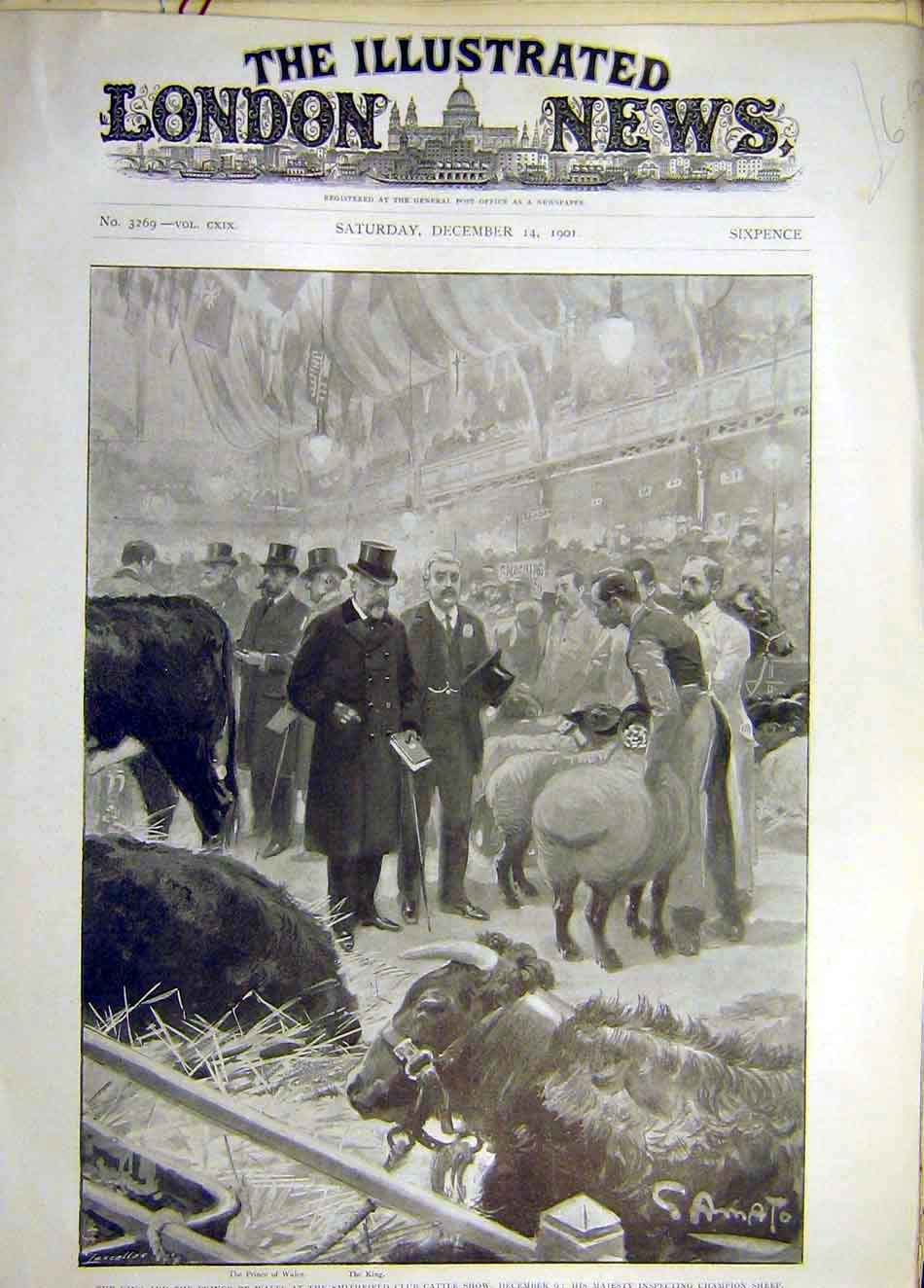 Print 1901 King Prince Wales Smithfield Cattle Show Sheep 387921 Old Original