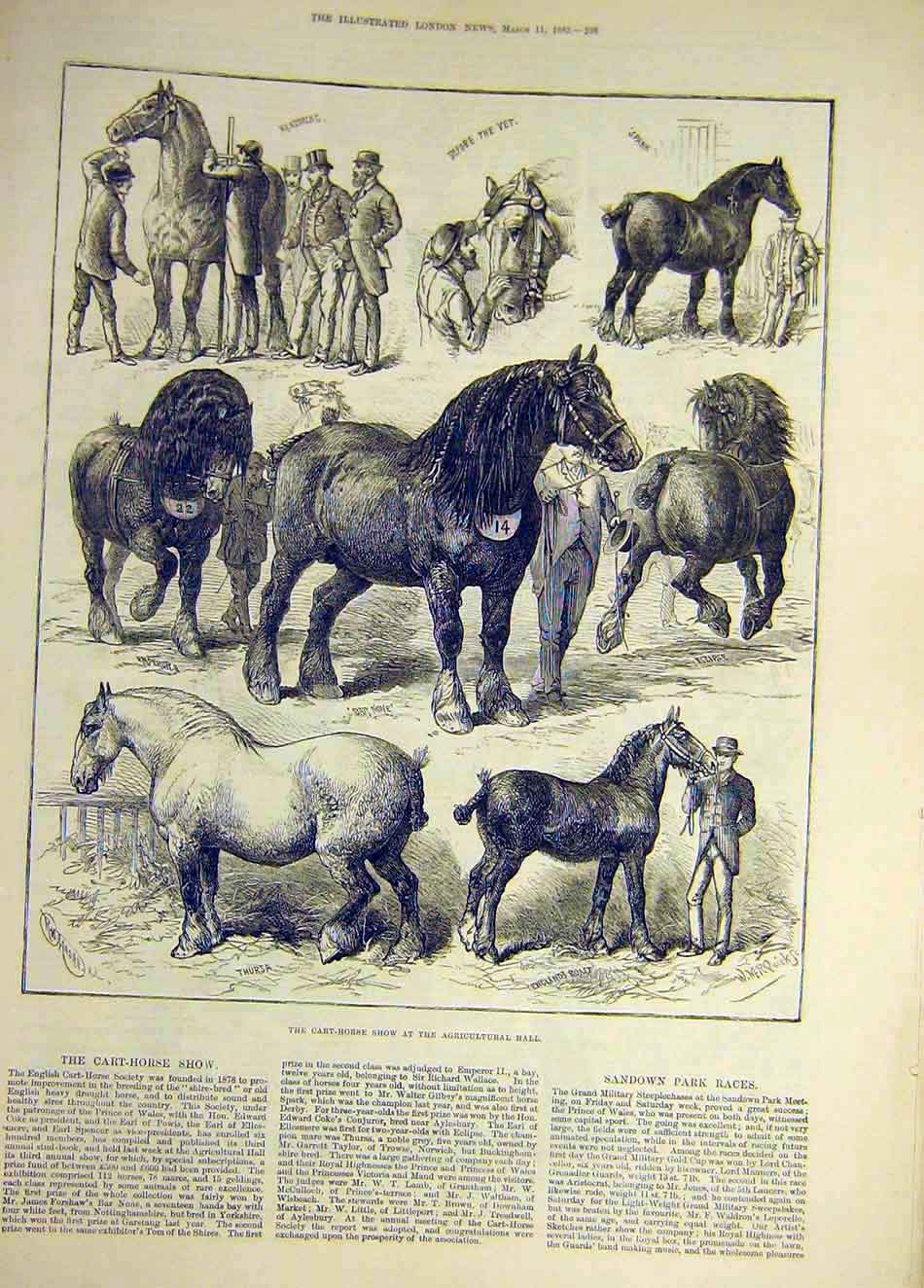 Print 1882 Cart-Horse Show Agricultural Animal 557921 Old Original