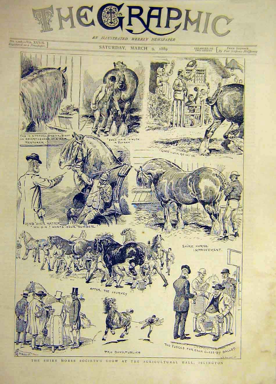 Print 1889 Shire Hores Society Show Islington Agricultural 587921 Old Original