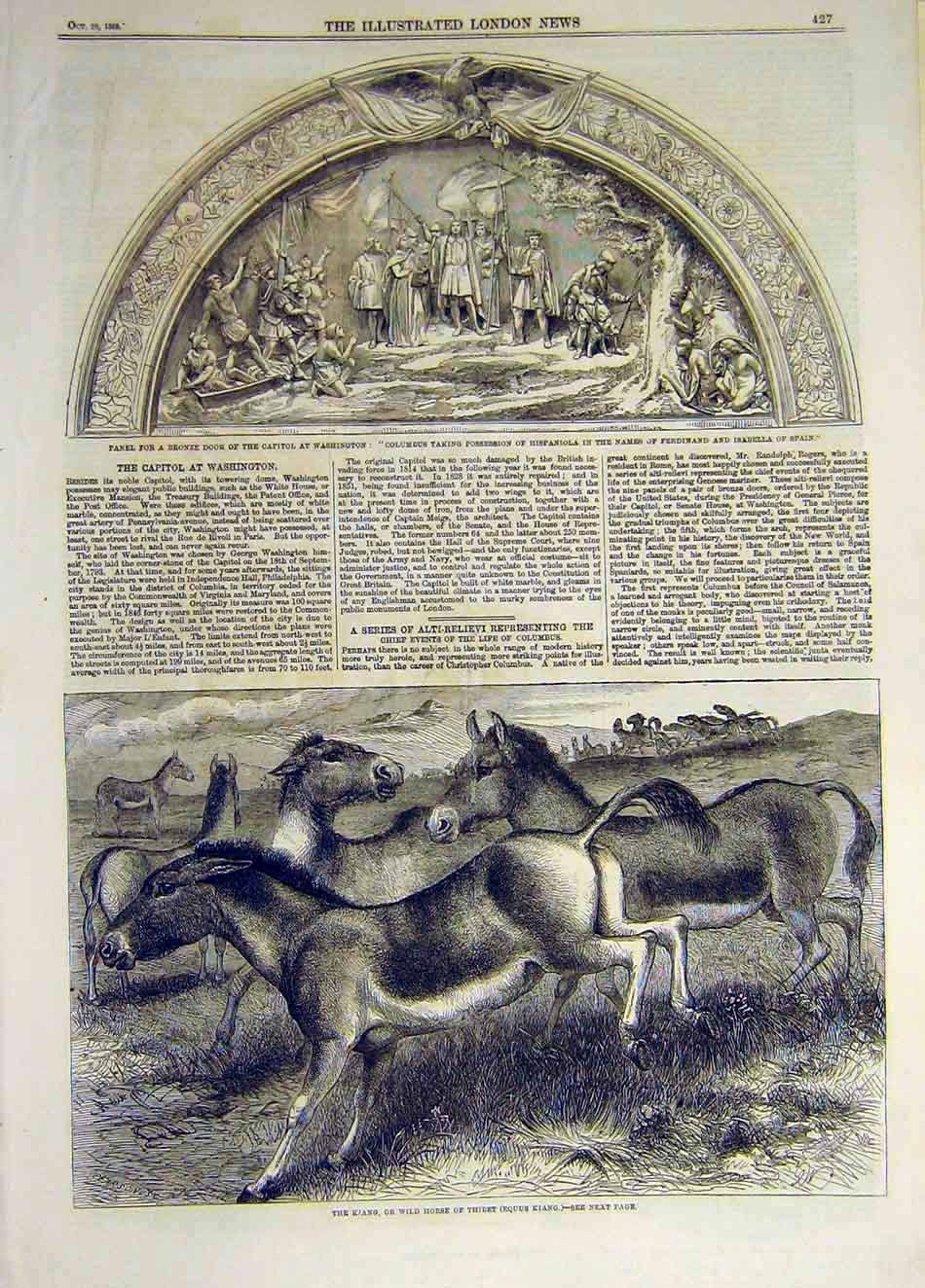 Print 1859 Panel Bronze Washington Kiang Wild-Horse Thibet 587931 Old Original