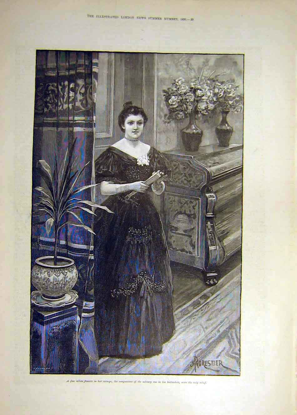 Print 1890 White Flowers Buttonhole Forestier Lady Yerba 067931 Old Original