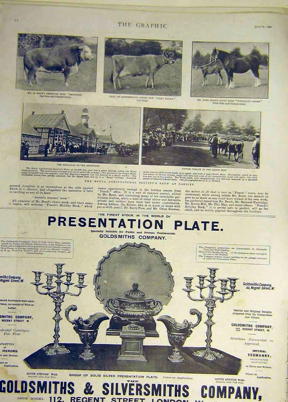 Print 1901 Cattle Show Cardiff Hereford Bull Jersey Cow Shire 217931 Old Original