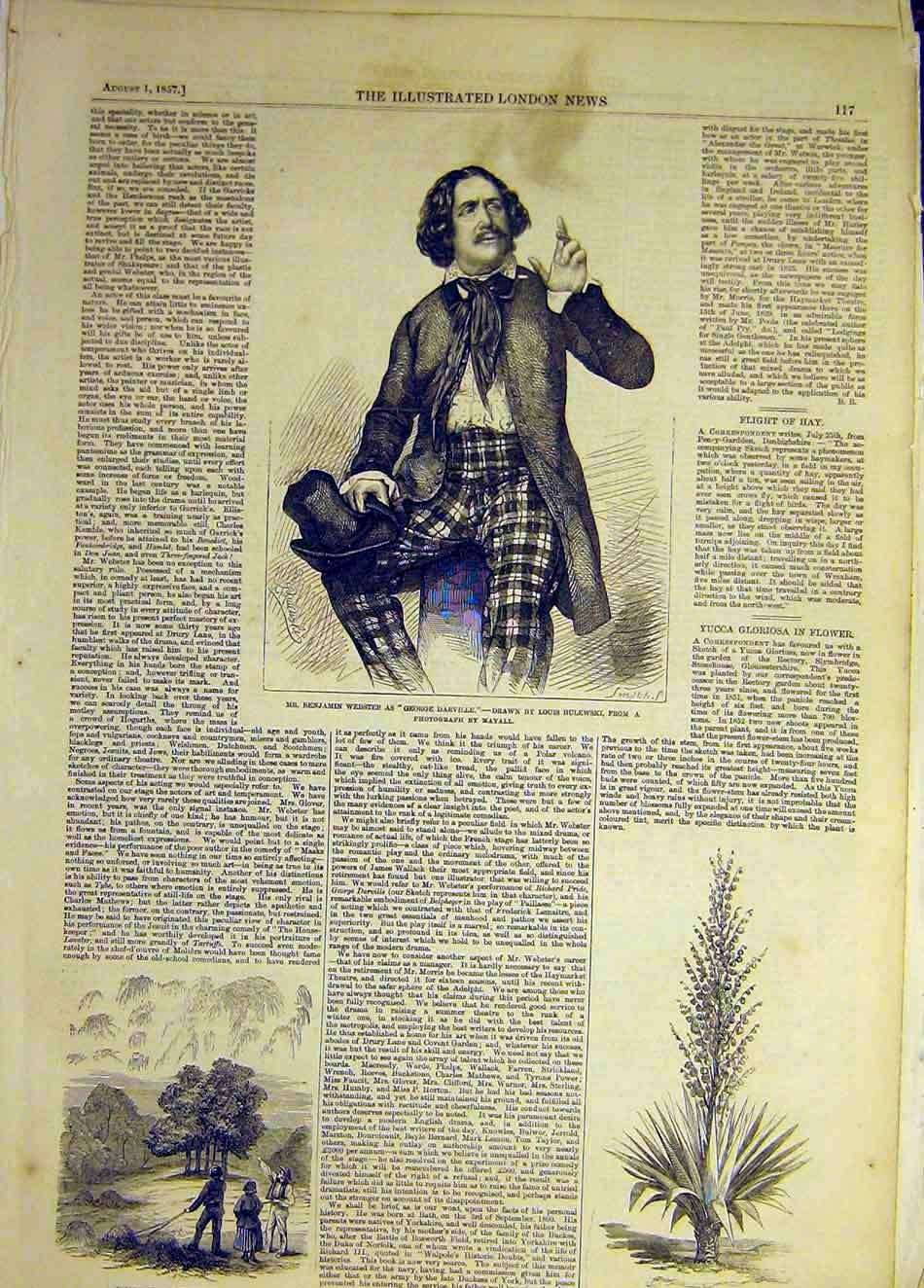 Print 1857 Webster Actor Bulewski Hay Denbighshire Yucca 807941 Old Original