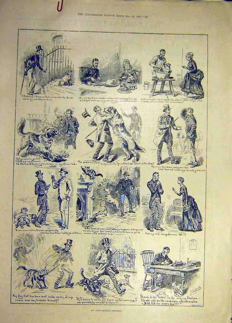 [Print 1885 Anti-Canine Protest Dog Sketches 487941 Old Original]