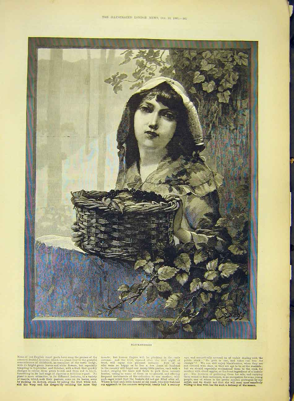Print 1885 Blackberries Girl Lady Woman Basket Fine-Art 007991 Old Original