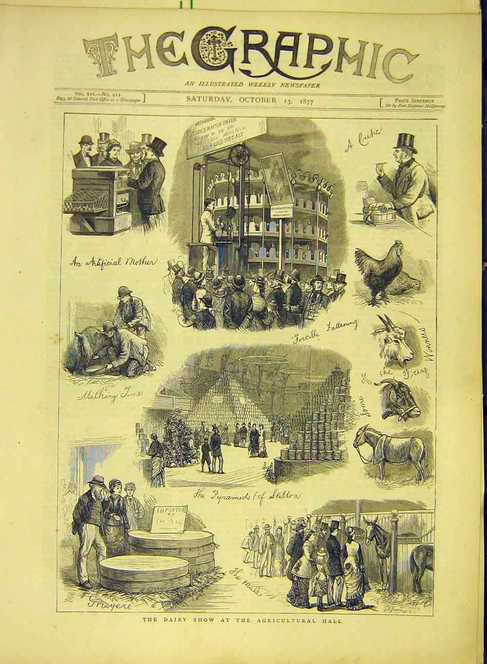 Print 1877 Dairy Show Agricultural Hall Stilton Gruyere 847991 Old Original