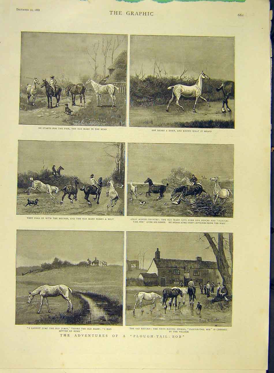 Print 1888 Sketches Plough-Tail-Bob Horse Hunt Mare Clarke 327991 Old Original