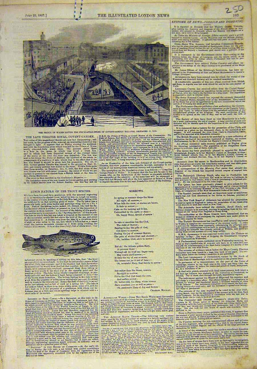 Print 1857 Prince Covent Garden Theatre Trout Fish 508011 Old Original