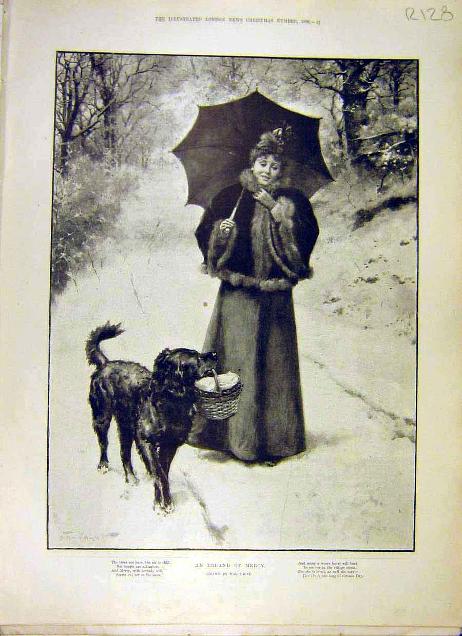 Print 1896 Lady Dog Paget Mercy Errand Burton Man Horse Art 28R8031 Old Original