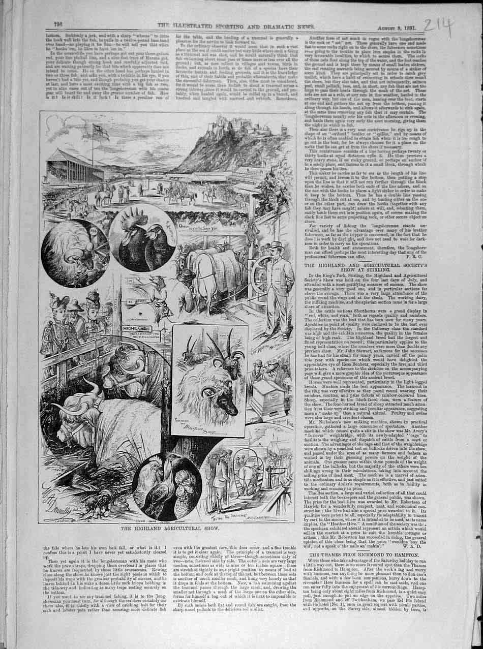 Print 1891 Highland Agricultural Show Sketches Animal 148041 Old Original