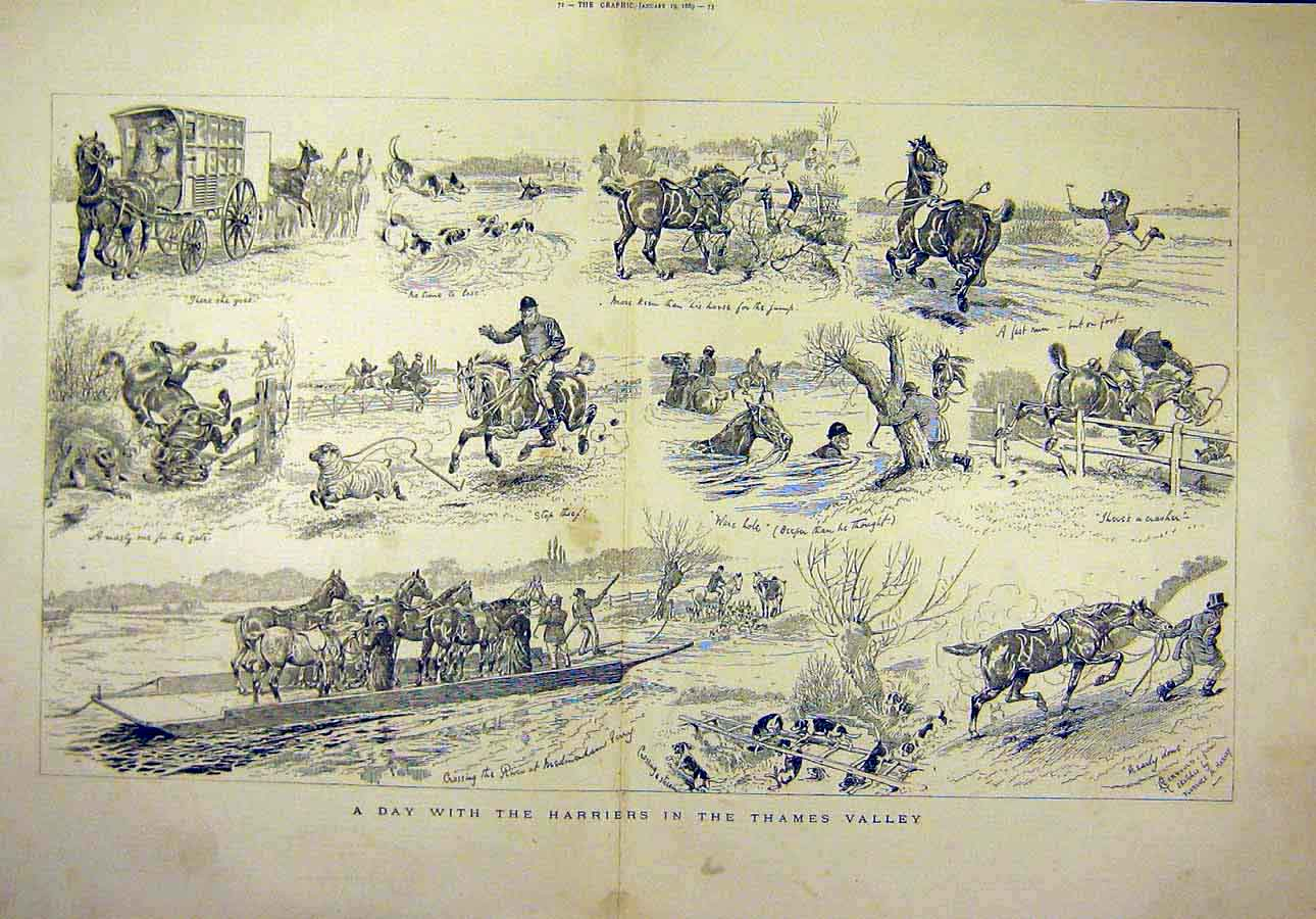 Print 1889 Harriers Thames Valley Sketches Horses Rider 24T8071 Old Original