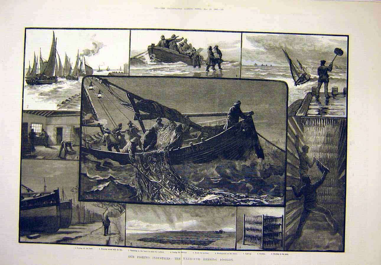 Print 1883 Fishing Industries Yarmouth Herring Fishery 75T8071 Old Original