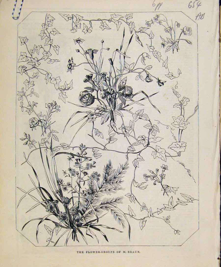 Print Flower Groups Braun Art Union C1847 Fine Art 54A8131 Old Original
