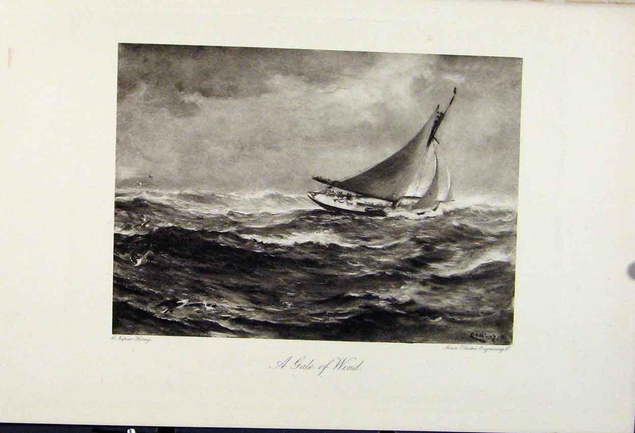 Print Gale Wind C1898 The Encyclopedia Sport Sailing 268241 Old Original