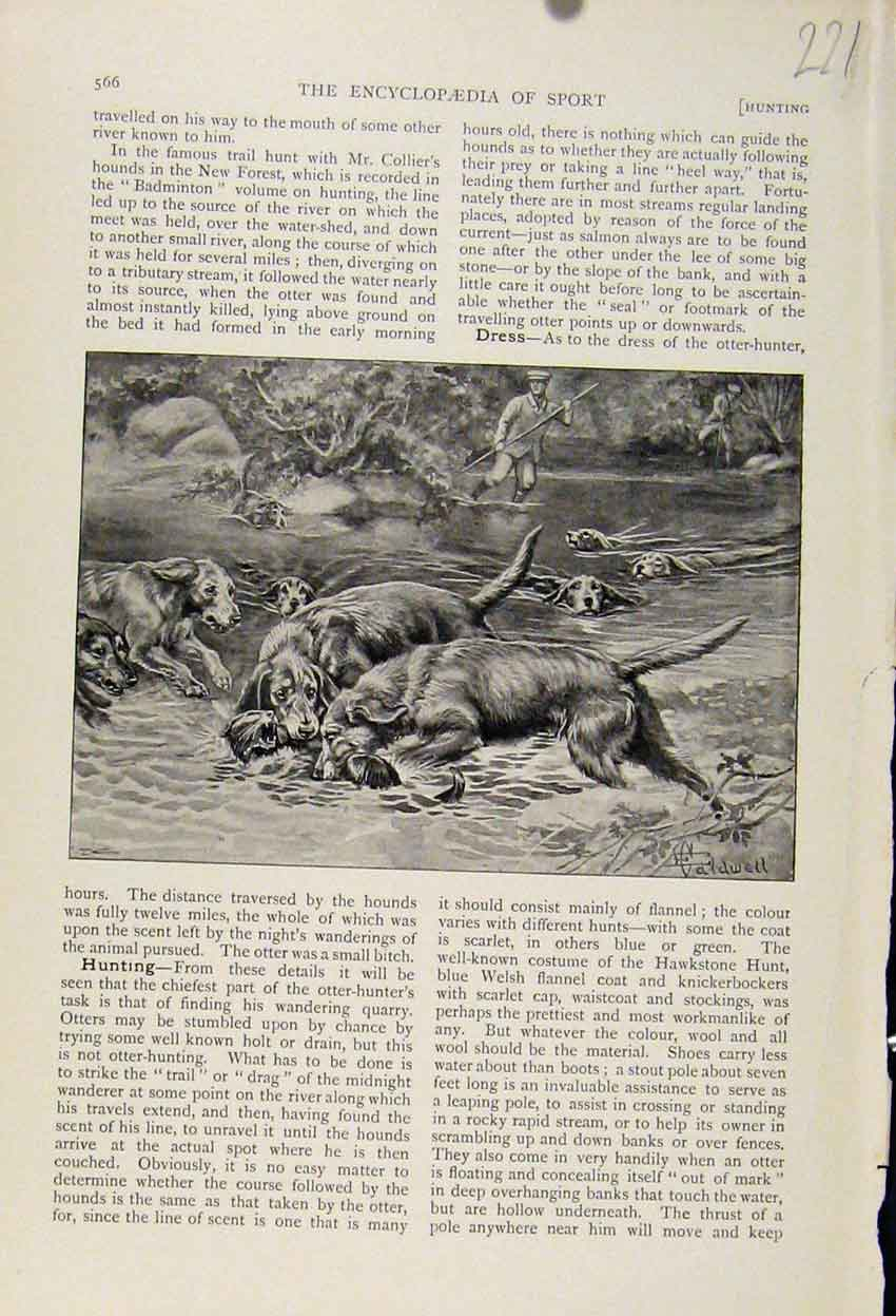 Print Dogs Hunting River The Encyclopedia Sport 218241 Old Original