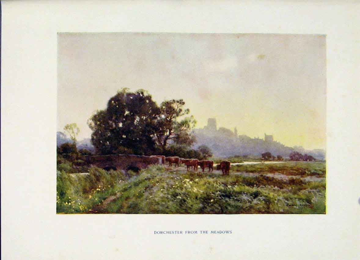 Print Dorchester Meadows Painting By Haslehust 138251 Old Original