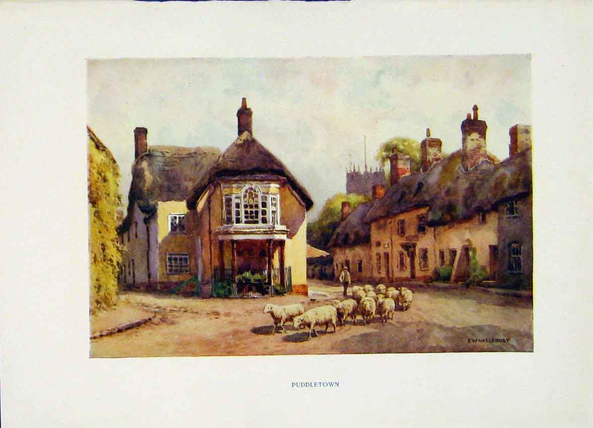 Print Puddletown C1920 Painting By Haslehust Fine Art Color 158251 Old Original