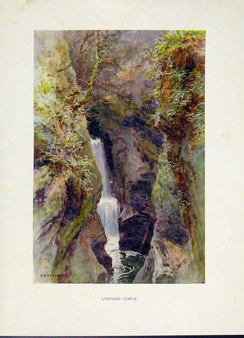 Print Lydford Gorge Painting By Haslehust C1920 Art 258251 Old Original