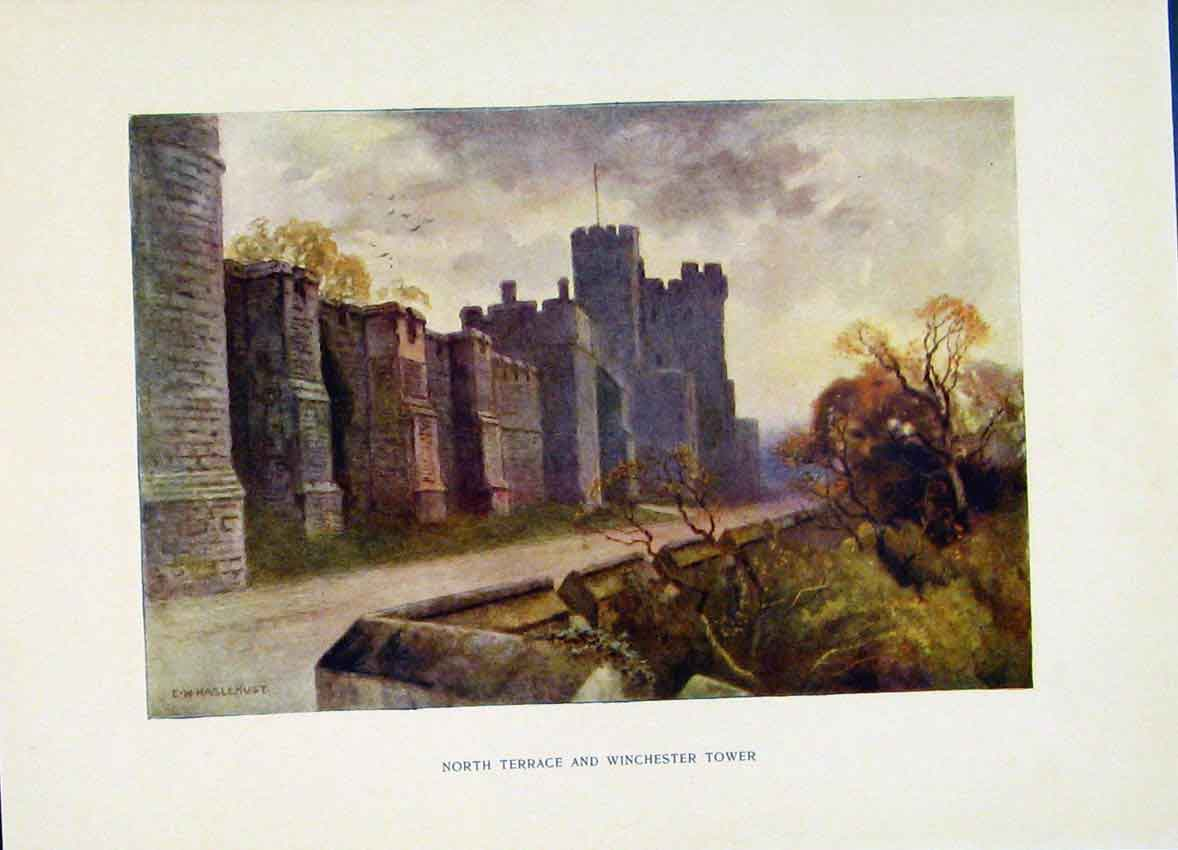 Print North Terrance Winchester Tower Windsor Haslehust 208251 Old Original
