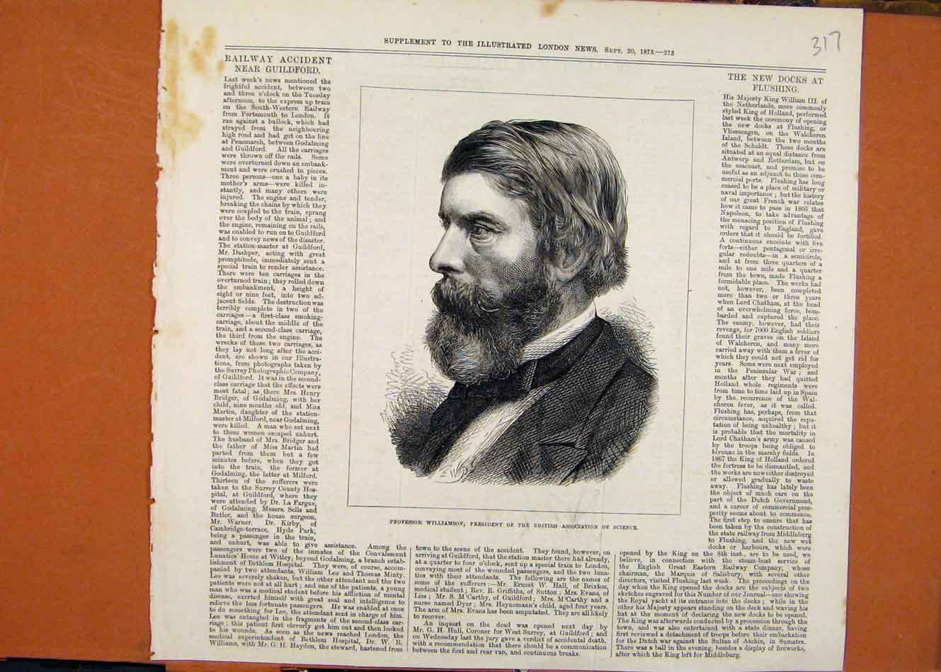 Print Professor Williamson Association Science C1873 178260 Old Original