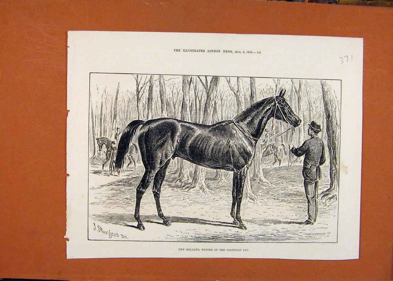 Print New Holland Horse Winner Goodwood Cup Horse Race 1876 718260 Old Original