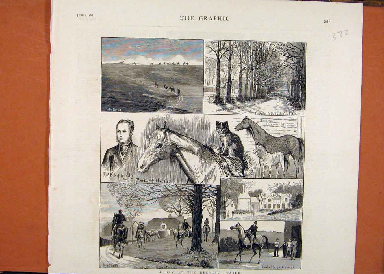 [Old Antique Print C1881 The Graphic Day At Russley Stables London News 728260 ]