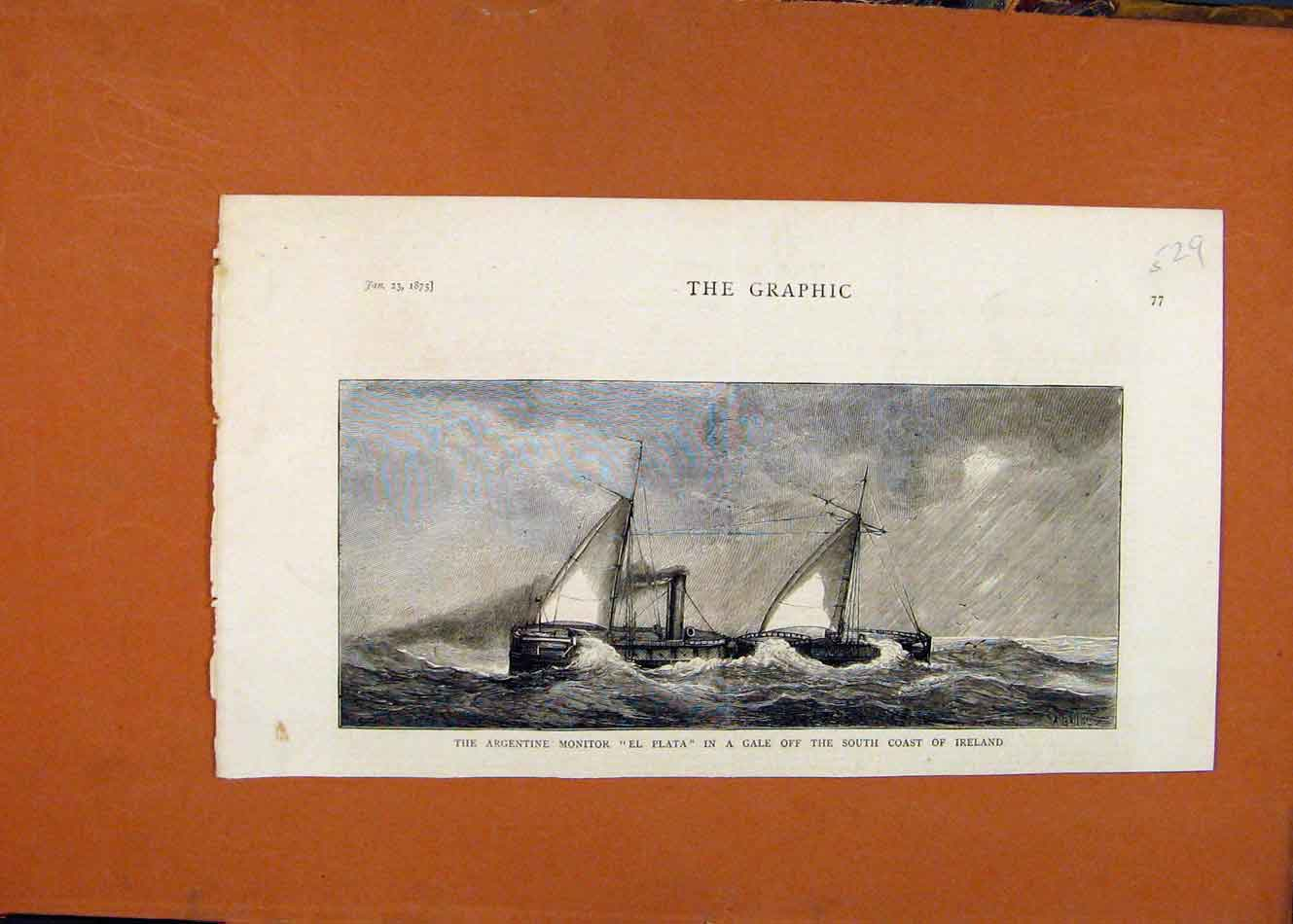 [Antique Print Argentine Monitor South Coast Ireland C1875 The Graphic 298260 ]