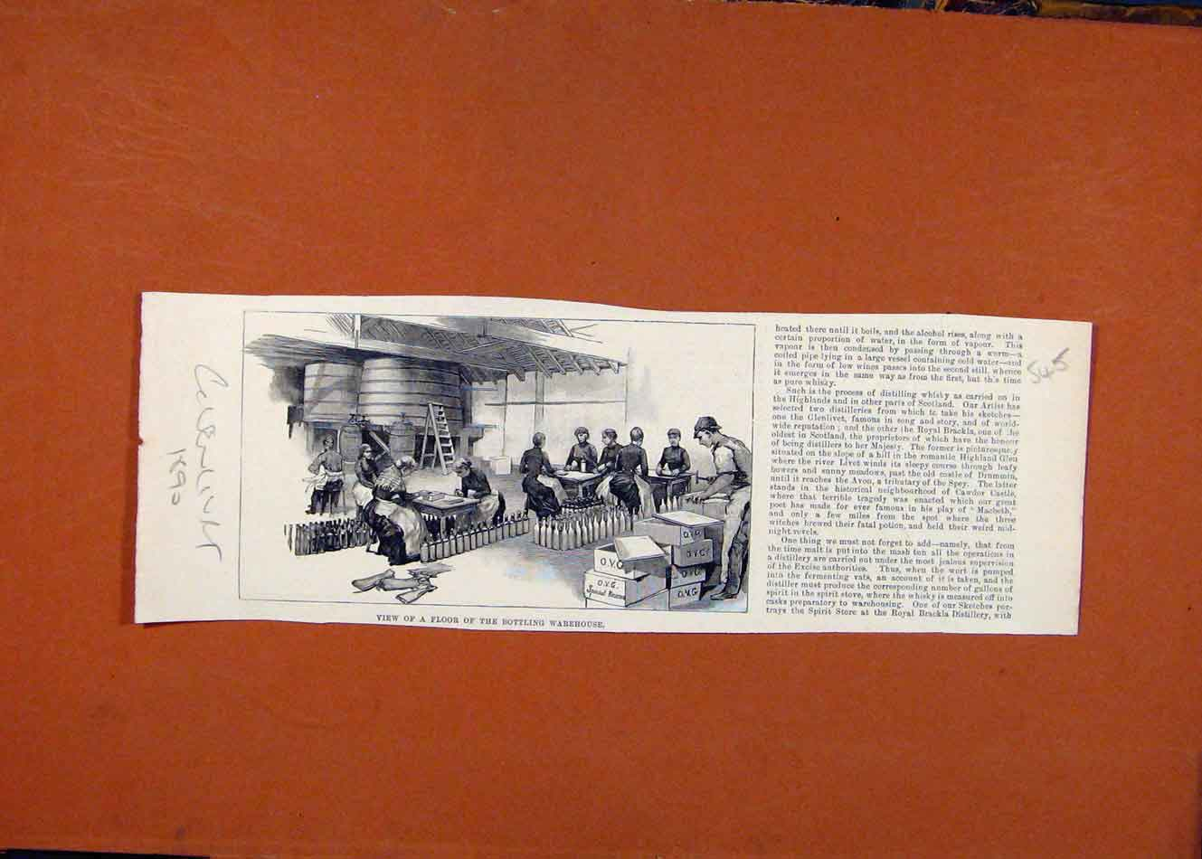 Print Bottling Warehouse C1890The Graphic 458260 Old Original