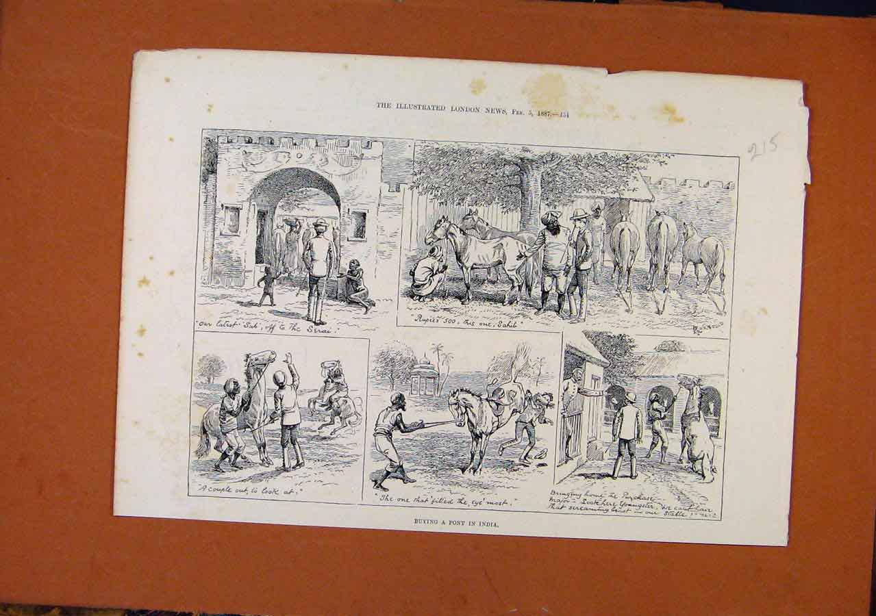 Print Buying Pony Indian C1887 Illustrated London News 158270 Old Original