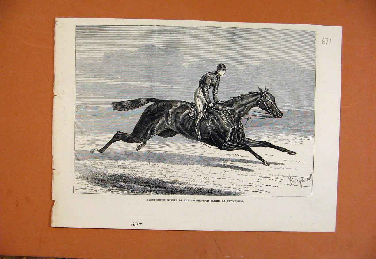 Print Chariebert Winer Two Thousand Newmarket C1879 718270 Old Original