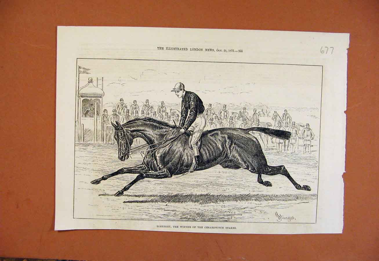 Print Roseberry Winner Cesarewitch Stakes C1876 778270 Old Original