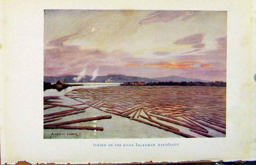 Print Colour Sweden 1927 Timber On River Angerman Harnosand 168371 Old Original